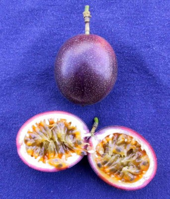 Passion fruit and cut fruit.psd.jpg